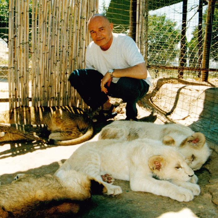 jjs-lion-site